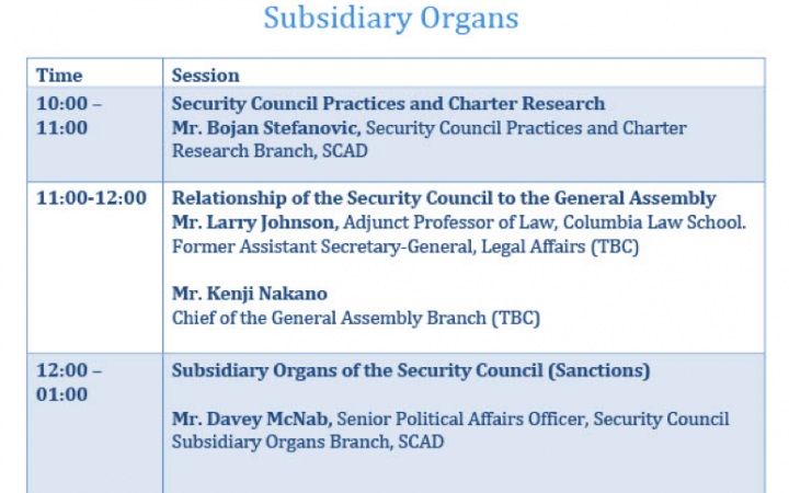 The core programme structure will cover the following areas, and will be adjusted as requested by the newly elected members of the Security Council as per their needs.