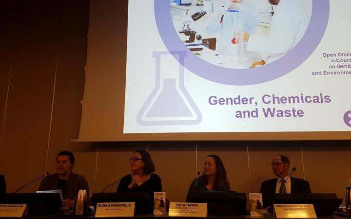 Gender, Chemicals and Waste online course presentation