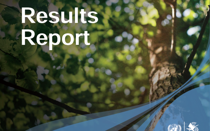 2019 Results Report (PDF)