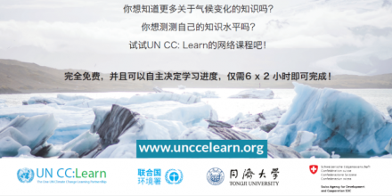 Chinese e-course flyer