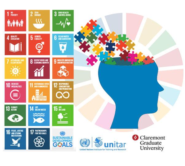 Executive Leadership Programme in Evaluation and the Sustainable Development Goals