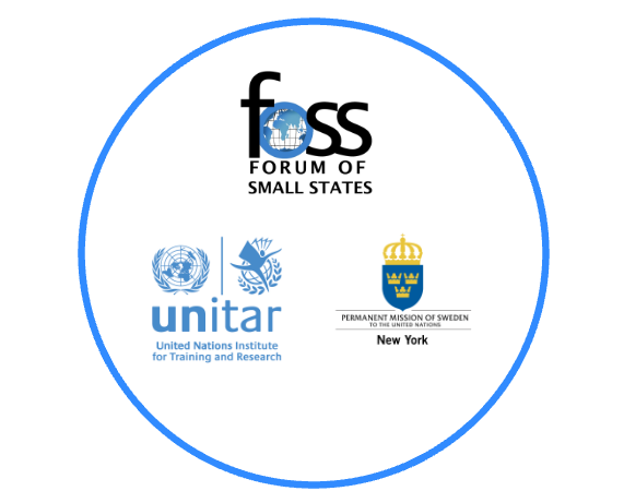 UNITAR Holds Event with FOSS Member States to Launch App
